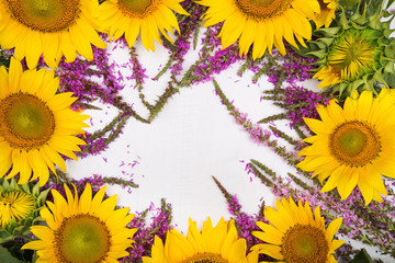 beautiful sunflowers and purple wild sage isolated on white