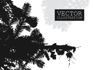 Spruce branch silhouette vector