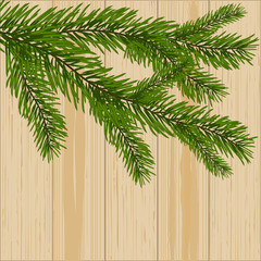 Two green spruce branches on the background of wood illustration