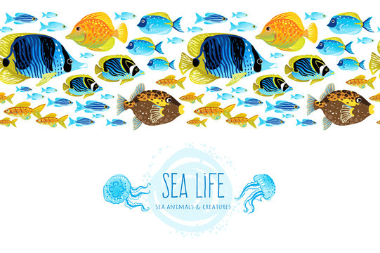 Horizontal seamless sea life border.