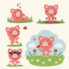 Vector set funny pig in different poses on summer meadow with flowers. Collection little pig in cartoon style.