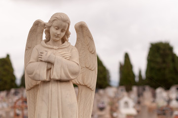 angel of death in cemetery with spiderweb