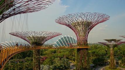 Baumskulpturen in Gardens at Marina in Singapur