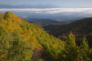 峠からの秋の山々