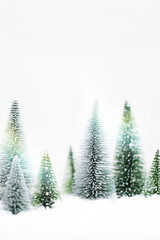 Snowy Winter Forest - Christmas Card