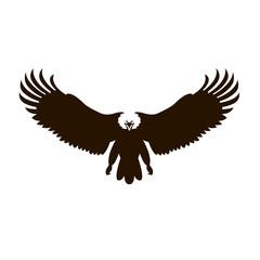Bald eagle vector illustration  black silhouette