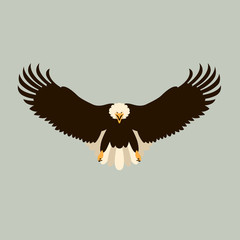 Bald eagle vector illustration style Flat