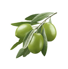 Green olives 3 isolated on white background