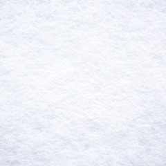 Fresh white snow background