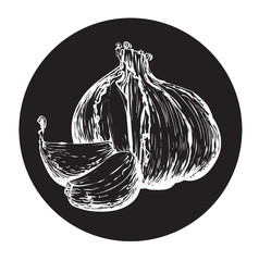 garlic in a circle monochrome