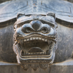 Close up of the head of a carved stone animal looking fierce showing teeth