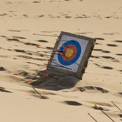 Arrows stuck in a target on the sand