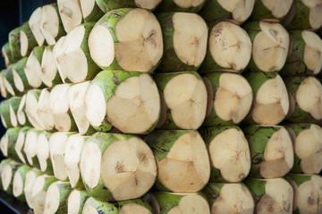 Coconuts for sale in boa viagem beach;Recife pernambuco brazil
