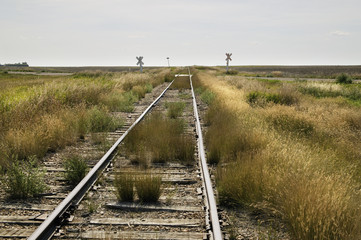 Old Railroad Tracks In A Rural Area; Saskatchewan, Canada