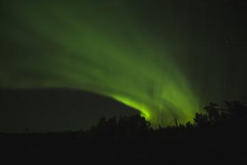 Aurora borealis cutting a swath across the night sky;Alberta, canada