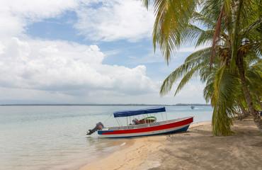 Boat at the Starfish beach under palm tree, archipelago Bocas del Toro, Panama