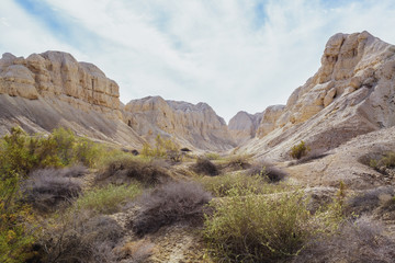 Rugged landscape in the wilderness of the jordan valley;Israel