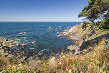 Small ocean cove;Oregon united states of america