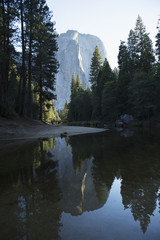 Mirror image reflection of trees and rock wall in Merced River, Yosemite Valley, Yosemite National Park; California, United States of America