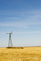 Abandoned windmill in a wheat field in Carson County; South Dakota, United States of America