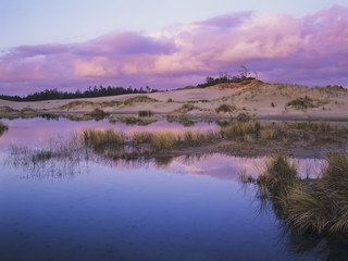 An ephemeral pool reflects the morning sky; Reedsport, Oregon, United States of America