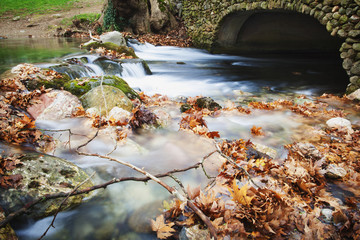 River flowing under stone bridge with floating autumn coloured leaves; Naoussa, Greece