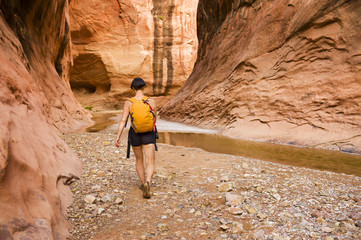 Female adventurer exploring a desert canyon narrows, Capitol Reef National Park; Utah, United States of America