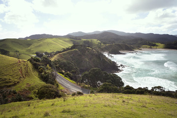Road on a mountainous seaside; North Island, New Zealand