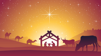 Birth of Jesus Christ - Christmas Nativity Scene