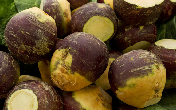 Swede vegetable. The rutabaga from an old Swedish word), swede from Swedish turnip, turnip, or neep or Brassica napus is a root vegetable