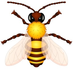 Cartoon wasp