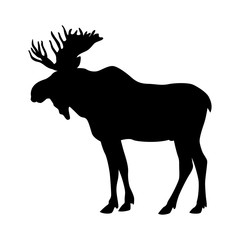 moose elk vector illustration black silhouette