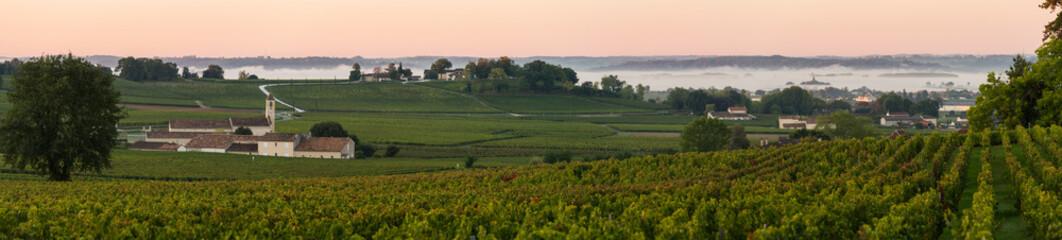Saint Emilion Vineyard Sunrise, Bordeaux Wine