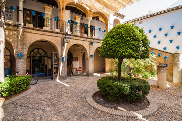 Inside typical spanish andalusian courtyard (patio), Andalusia province.