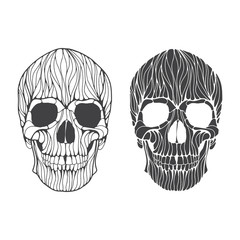 Vector hand drawn skull illustration. Black and white skull for Halloween, Day of the dead t-shirt, poster design.