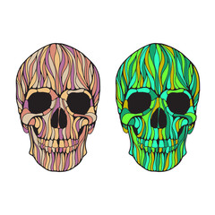 Vector hand drawn skull illustration. Colorful skull for Halloween, Day of the dead t-shirt, poster design.