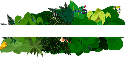 Tropical jungle rainforest foliage. Floral design background - vector illustration