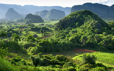landscape of valley of Vinales,Cuba