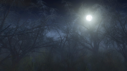 Spooky winter forest in the mist at moonlight.