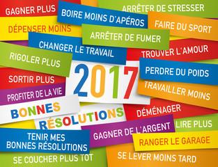 2017 - Carte de vœux - Bonnes résolutions