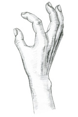 Hand pinch gesture. Hand drawing in pencil. Illustration isolated on white background.