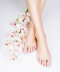 Wall Murals Pedicure female feet with white french pedicure on nails. at spa salon