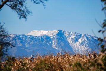 Blick auf den Schneeberg mit einem Feld im Vordergrund
