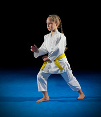 Girl martial arts fighter