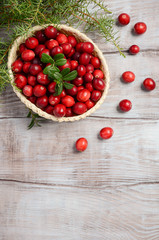 Harvest fresh red cranberries in wicker basket, top view, copy space