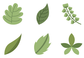 9 Leaf and Stalk Icons