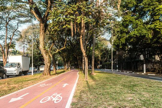 Bike Path in the Streets of Sao Paulo, Brazil (Brasil)