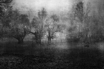 Art grunge landscape showing creepy old forest on cloudy autumn