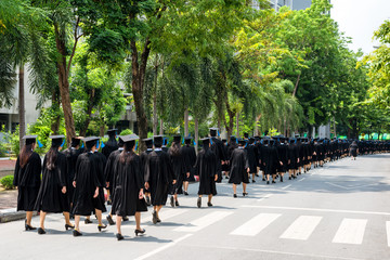 Back of graduates during commencement at university.