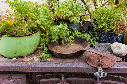 Cast iron and plants.